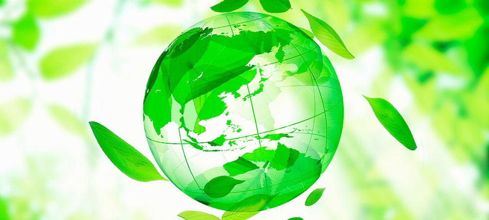 環境に対する取組